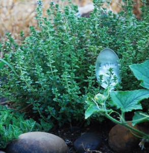 herb spoons4