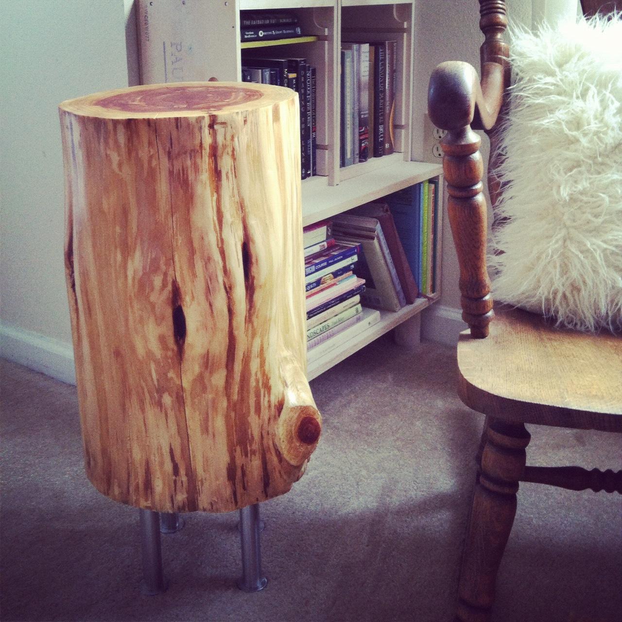 cedar stump8
